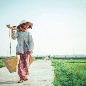 Exploring the UN SDGs in Vietnam