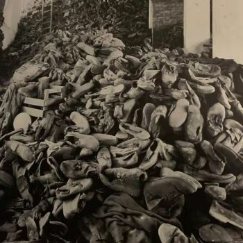 Emily's Reflection: A Journey to Auschwitz