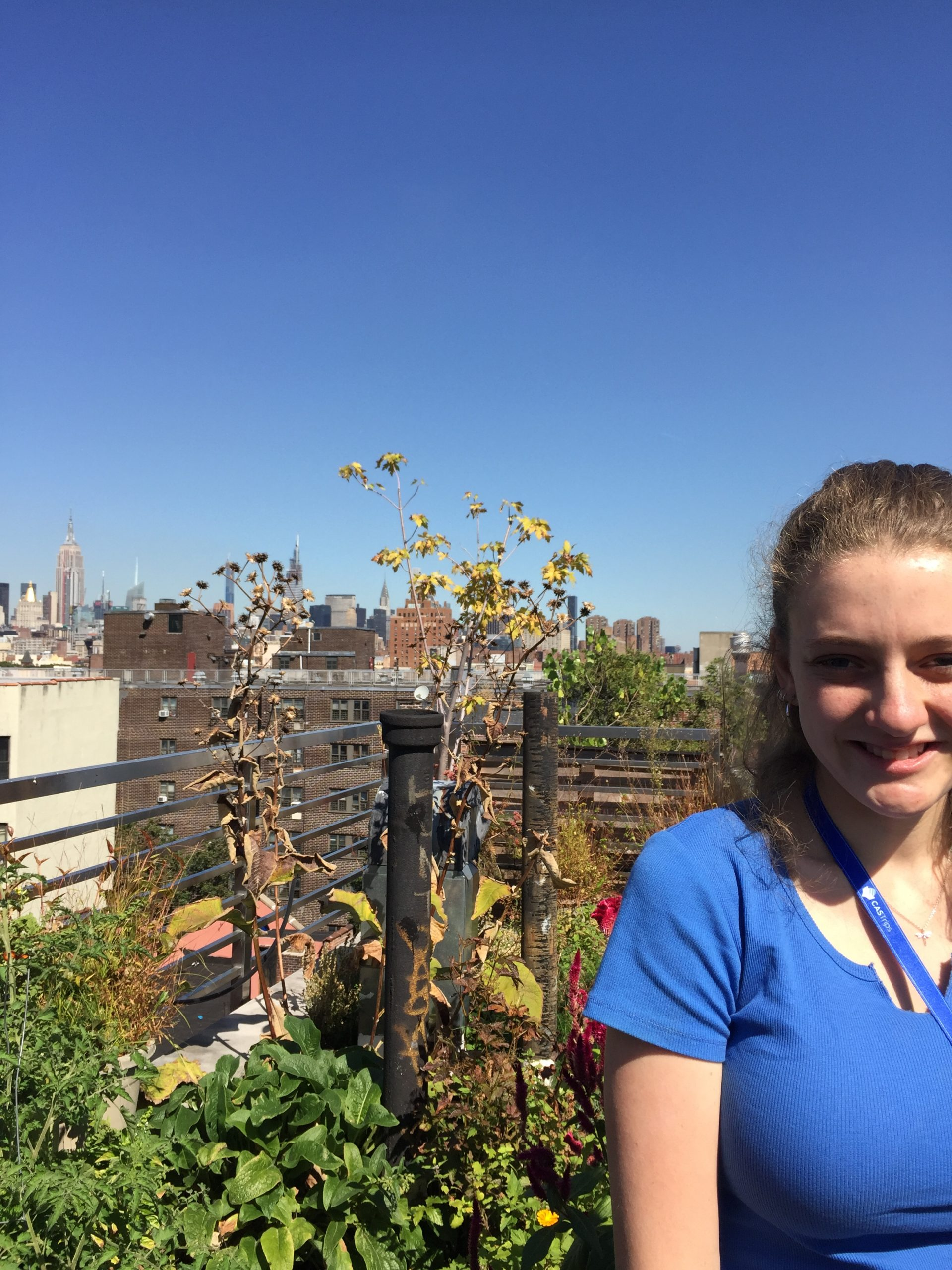 Olivia's Reflection: New York Autumn 2019